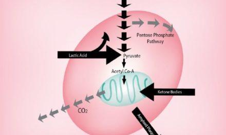 Le cancer et l' Alzheimer sont possiblement le résultat d'un même  phénomène: l'inflammation.